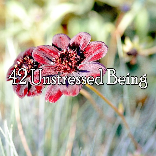 42 Unstressed Being