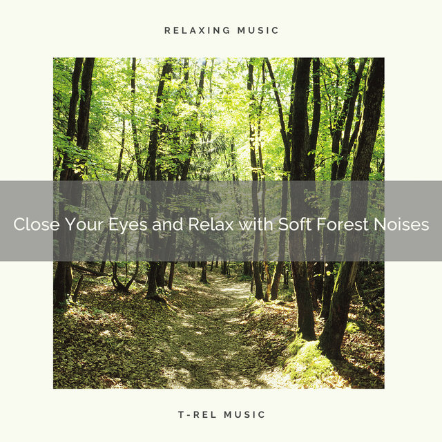 2021 New: Close Your Eyes and Relax with Soft Forest Noises