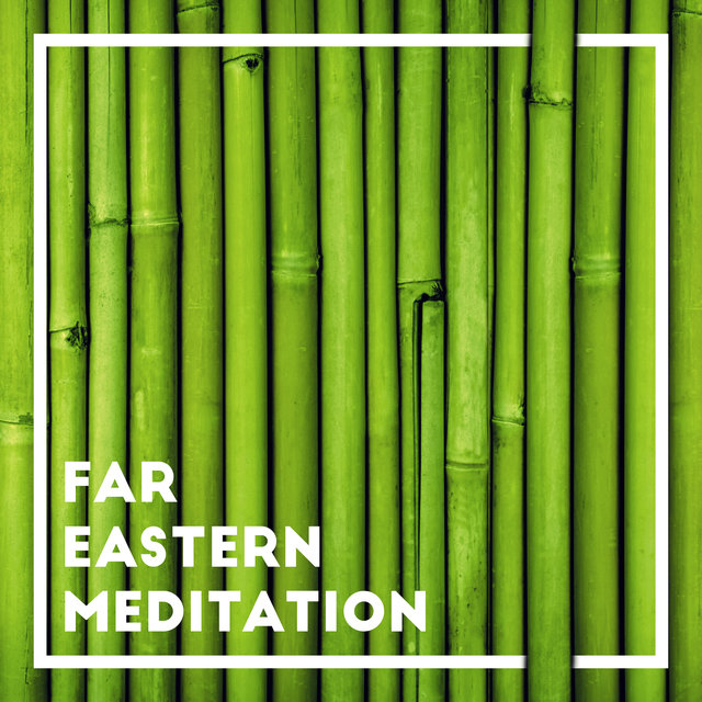 Far Eastern Meditation - Mesmerizing Sounds with an Oriental Note, Spiritual Food for Body and Mind, Achieve Peace and Balance, Deep Asian Rhythms