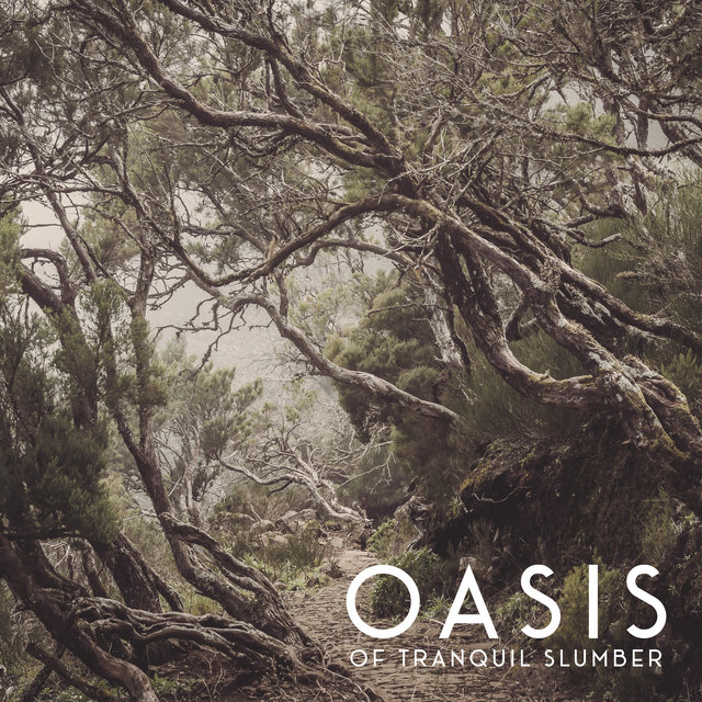 Oasis of Tranquil Slumber - New Age Dreaming, Sleeping Sounds, Sweet Dreams, Music to Calm Down, Sleep Well, Soft Night Sounds to Relax
