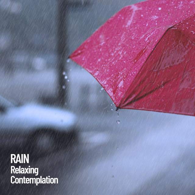 Rain: Relaxing Contemplation
