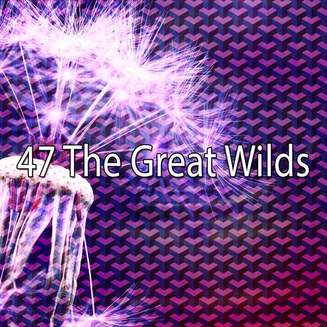 47 The Great Wilds