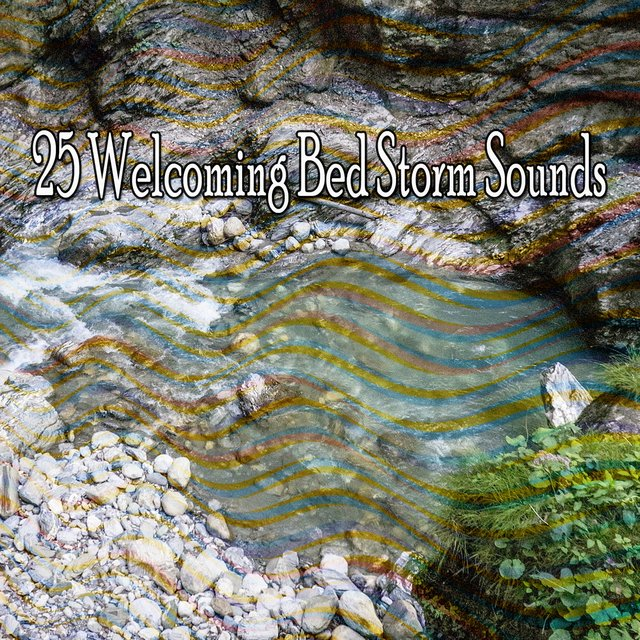 25 Welcoming Bed Storm Sounds