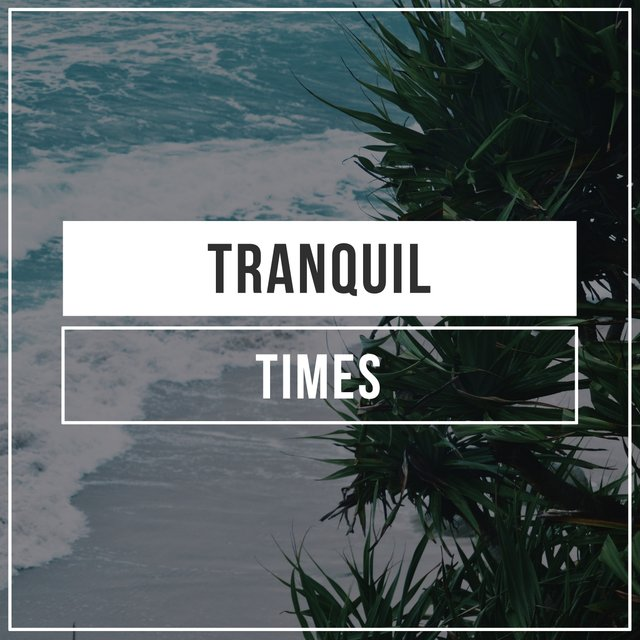 Tranquil Times