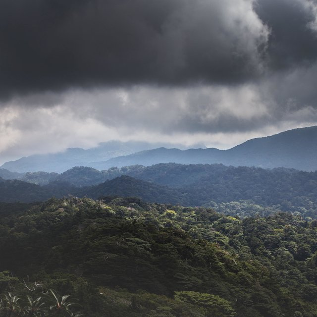 Enchanted Nature Melodies / Ambient Soothing Music, Sunrise Yoga, Happy and Confident