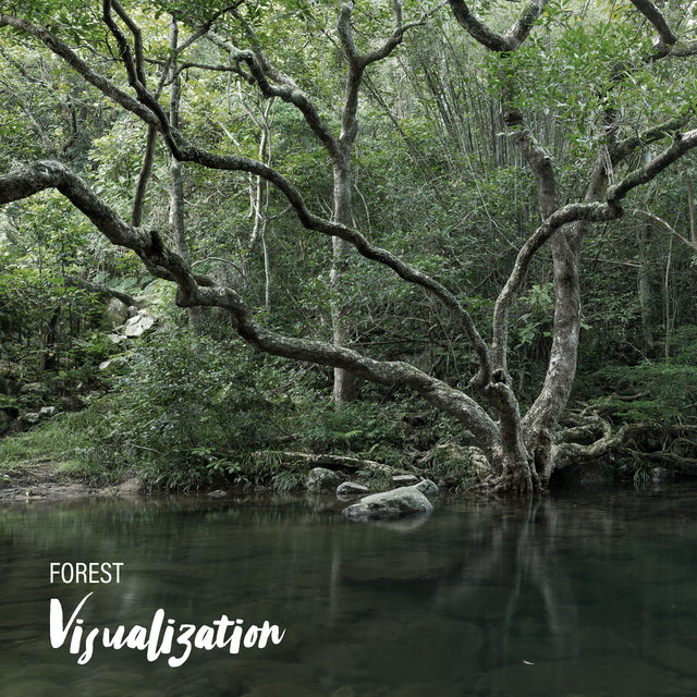 Forest Visualization - Close Your Eyes and Take Your Thoughts to the Heart of Nature with This Great New Age Music, Nature Sounds Relaxation, Woodland Escape, Bird Calls, Spirit of Harmony