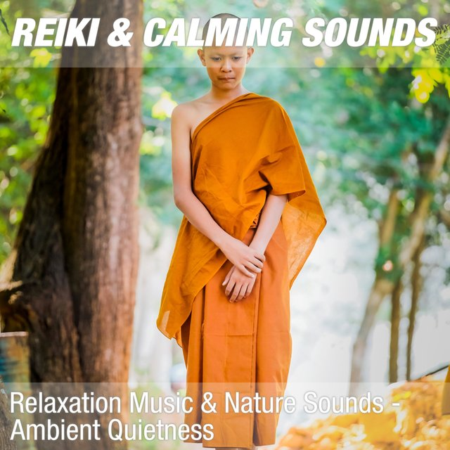 Relaxation Music & Nature Sounds - Ambient Quietness