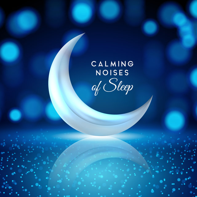 Calming Noises of Sleep: Listen and Enjoy the Best New Age Ambient Music Composed for Perfect Sleep, Rest and Calming Down