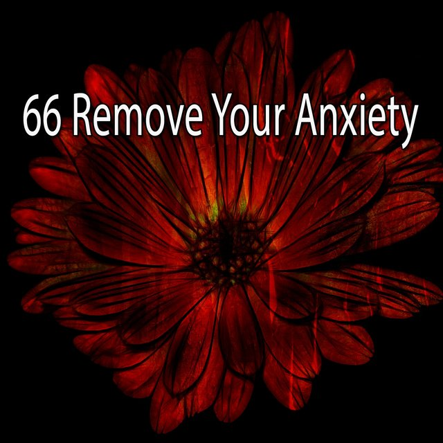 66 Remove Your Anxiety