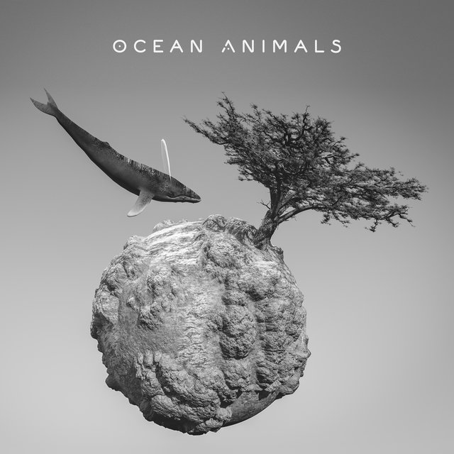 Ocean Animals: Binaural Sounds of Dolphins, Whales and Deepest Ocean Creatures