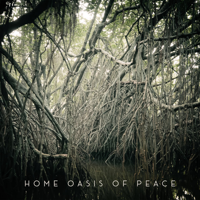 Home Oasis of Peace: Serene Background Music for a Time of Rest and Total Relaxation