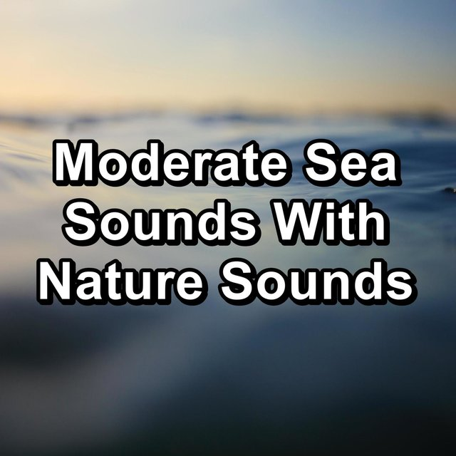 Moderate Sea Sounds With Nature Sounds