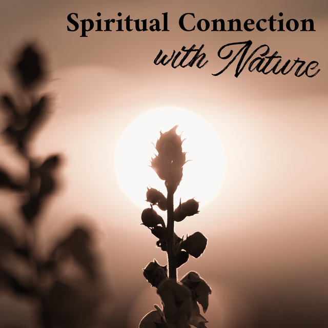 Spiritual Connection with Nature - Meditation Therapy Music with Nature Sound, Asian Zen, Deep Concentration, Chakras Energy, Relax Your Brain, Open Heart, Serenity and Balance