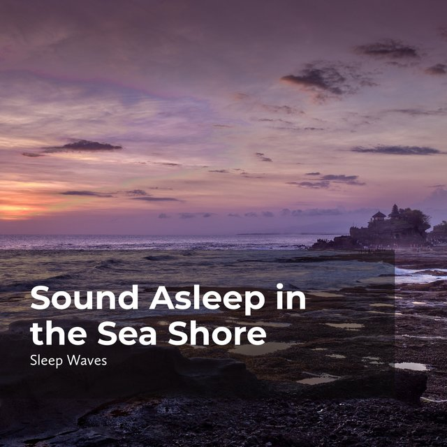 Sound Asleep in the Sea Shore