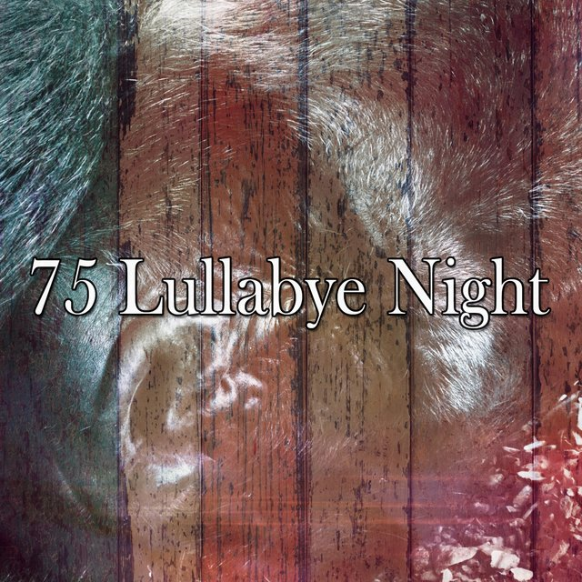 75 Lullabye Night