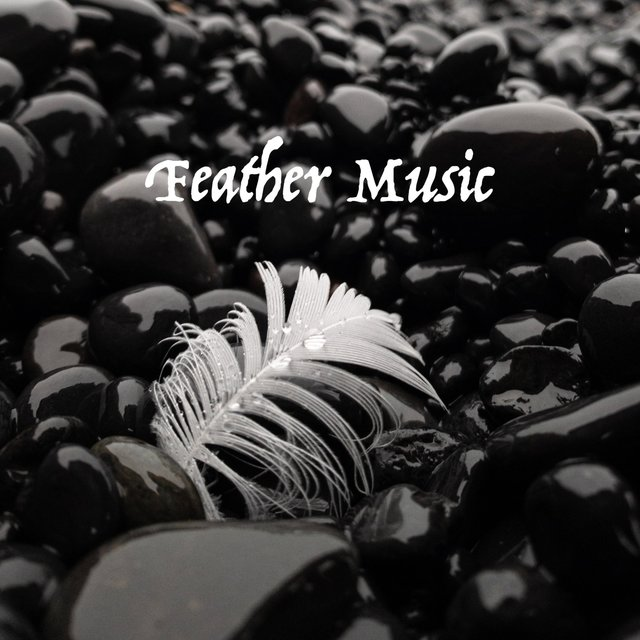 Feather Music