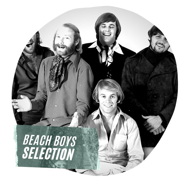 Beach Boys Selection