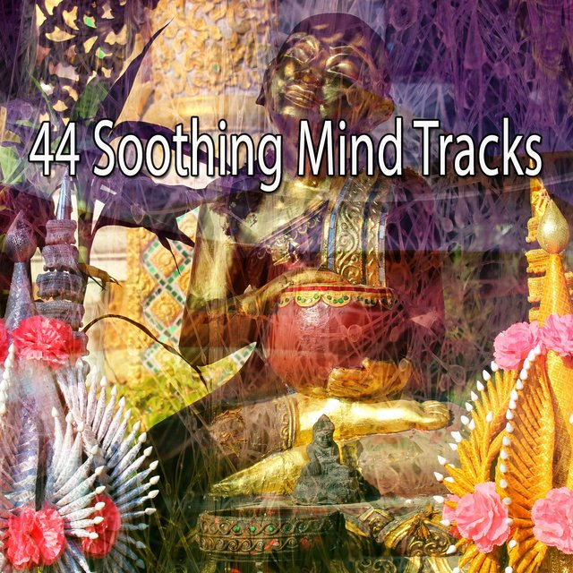 44 Soothing Mind Tracks