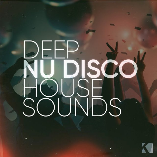 Deep Nu Disco House Sounds