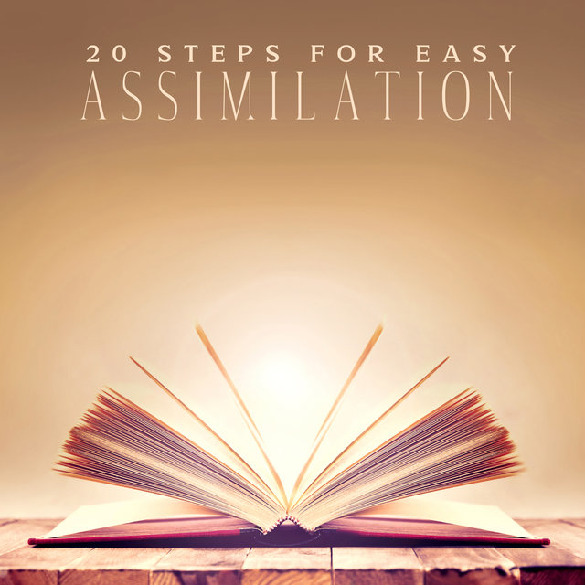 20 Steps for Easy Assimilation: Sounds to Help You Learn Effectively