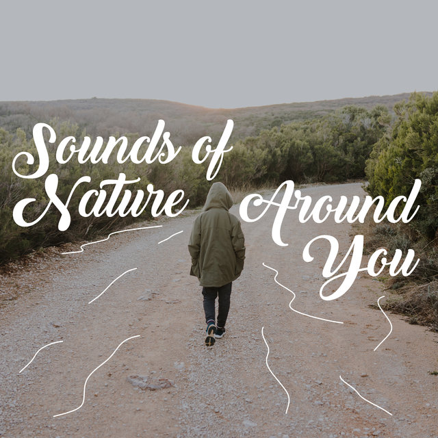 Sounds of Nature Around You – New Age Music to Relax