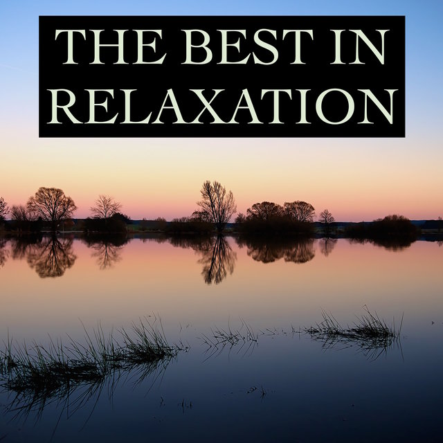 The Best in Relaxation - Timeless Nature & Water Melodies for Ultimate Stress Relief, Mindfulness, Deep Sleep, Study Concentration, Yoga, Meditation Focus and Better Mental Health