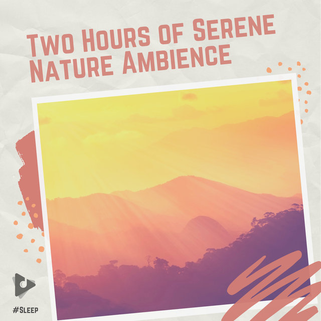 Two Hours of Serene Nature Ambience