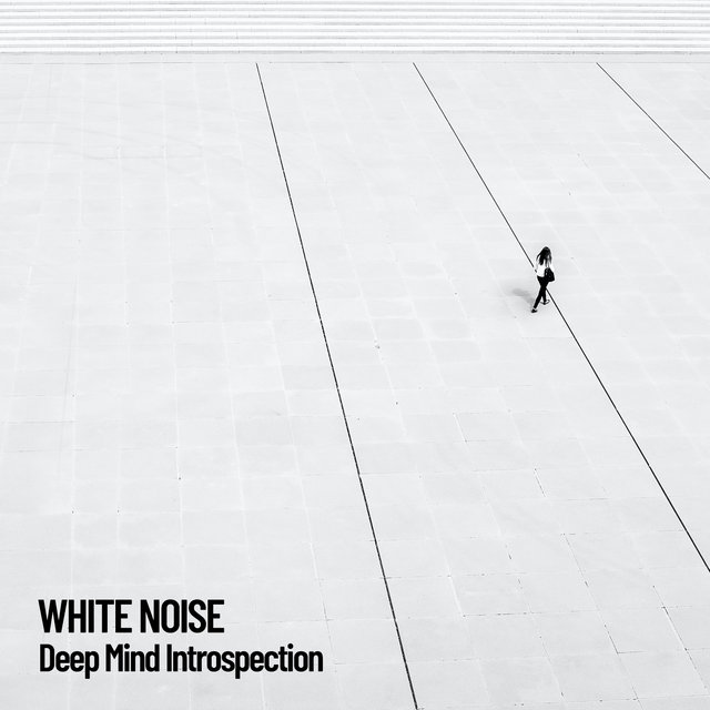 White Noise: Deep Mind Introspection