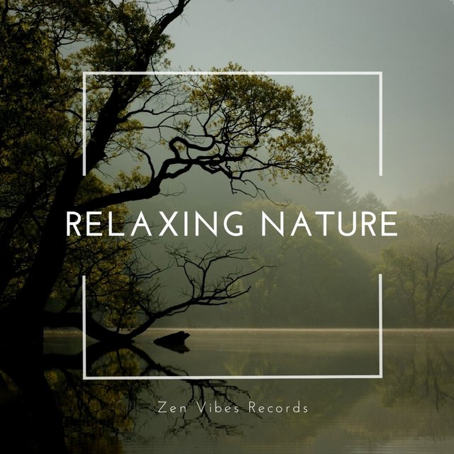 Relaxing Nature