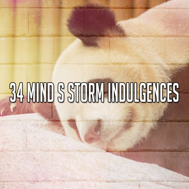 34 Mind S Storm Indulgences