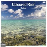 Coloured Reef (Christian Drost Remix)