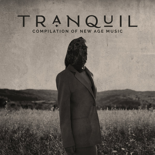Tranquil Compilation of New Age Music