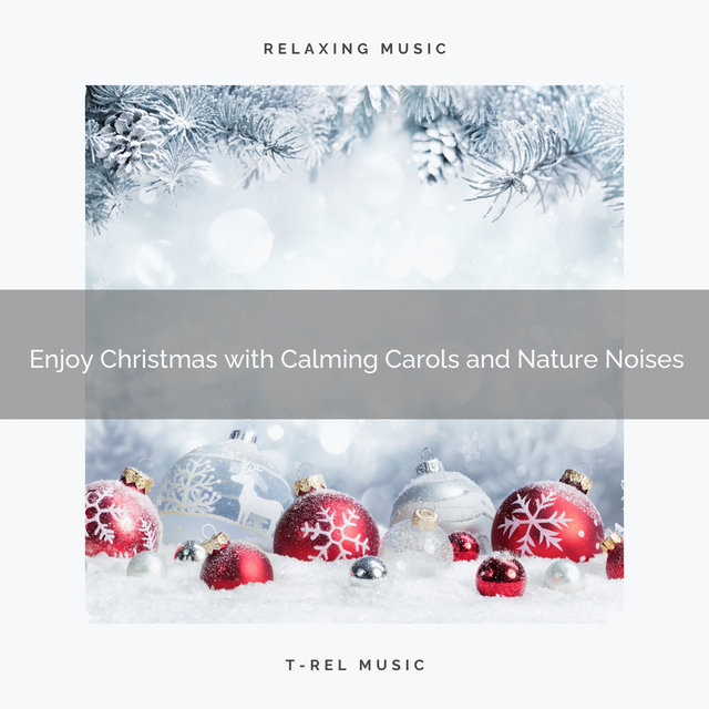 Enjoy Christmas with Calming Carols and Nature Noises