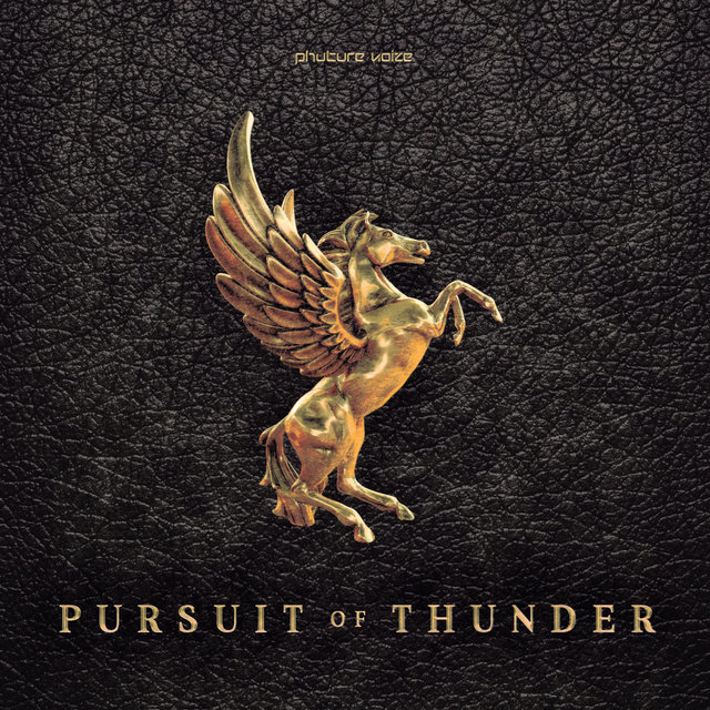 Pursuit of Thunder