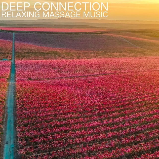 Deep Connection (Relaxing Massage Music)