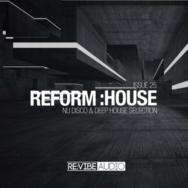 Reform:House Issue 25