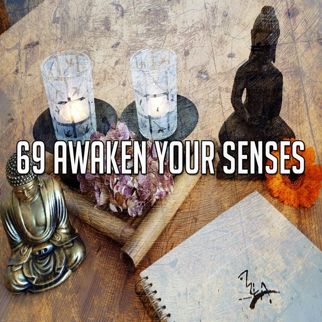 69 Awaken Your Senses