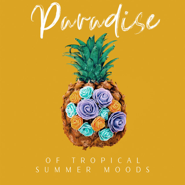 Paradise of Tropical Summer Moods