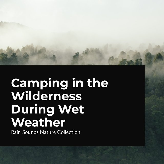 Camping in the Wilderness During Wet Weather