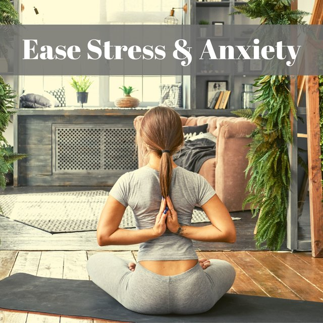Ease Stress & Anxiety - Relaxing Music for Guided Meditations