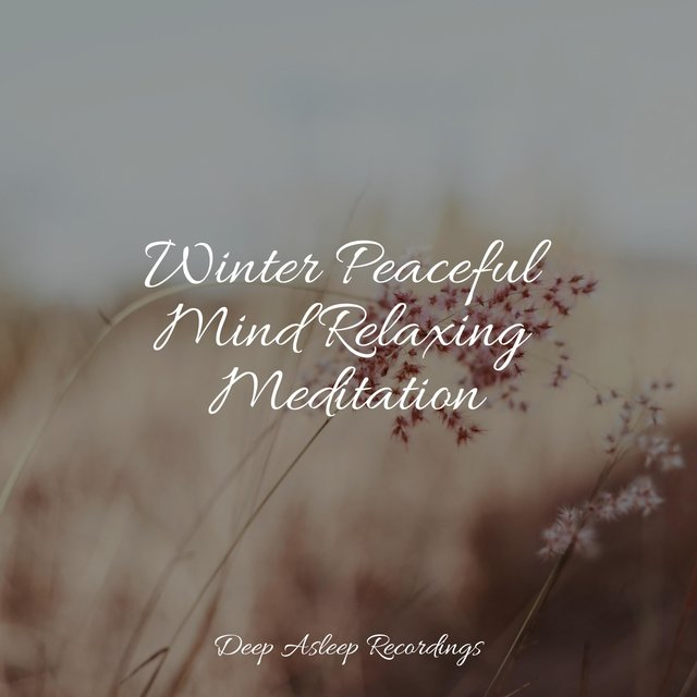 Winter Peaceful Mind Relaxing Meditation