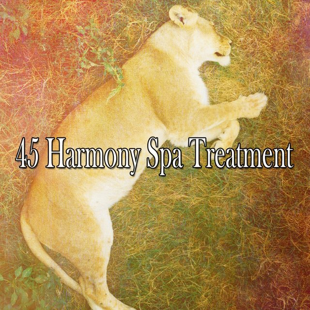 45 Harmony Spa Treatment