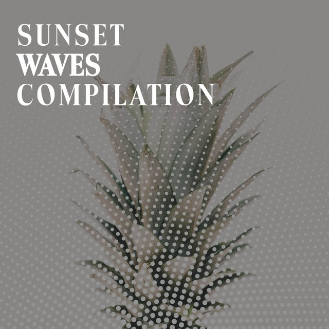 Sunset Waves Compilation