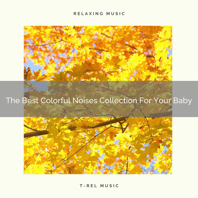 The Best Colorful Noises Collection For Your Baby