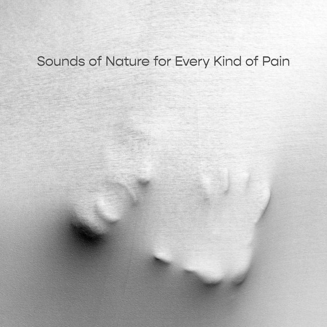 Sounds of Nature for Every Kind of Pain – 15 Gentle Melodies That Relieve Stomach Ache and Headache but Also from Stress, Anxiety and Depression