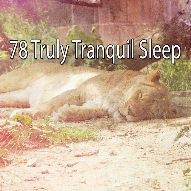 78 Truly Tranquil Sle - EP