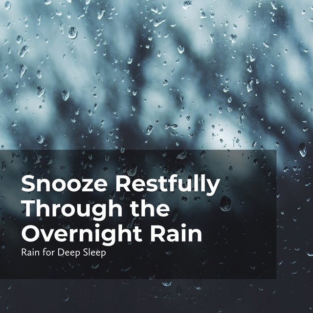 Snooze Restfully Through the Overnight Rain