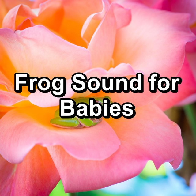 Frog Sound for Babies
