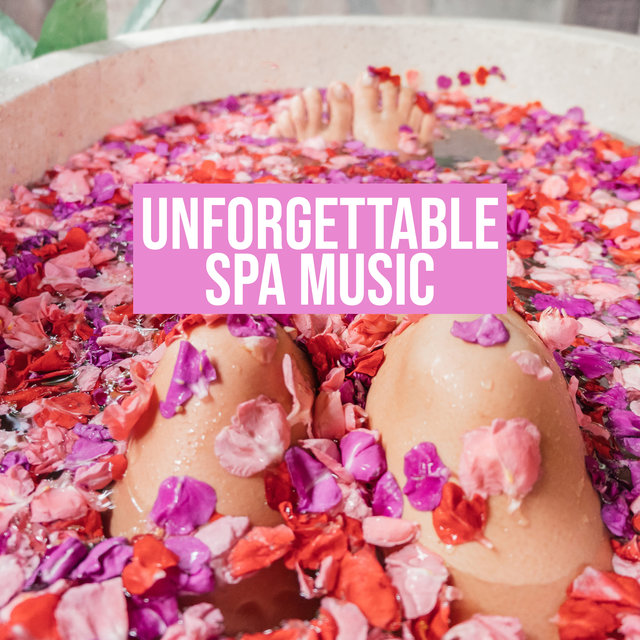 Unforgettable Spa Music – Collection of Ambient Nature Sounds for Spa & Wellness Salons, Massage Session, Beauty Treatments, Oasis of Relaxation, Time for You