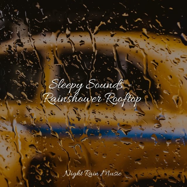 Sleepy Sounds - Rainshower Rooftop